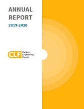 Portada del informe anual 2020