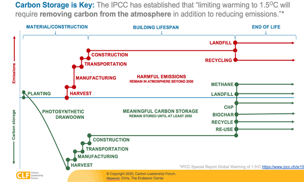 carbon storage is key